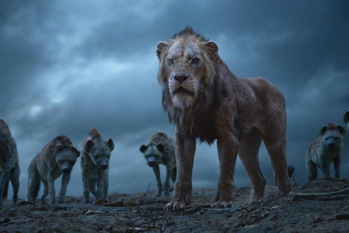 Фото ву The Lion King Movie Clip